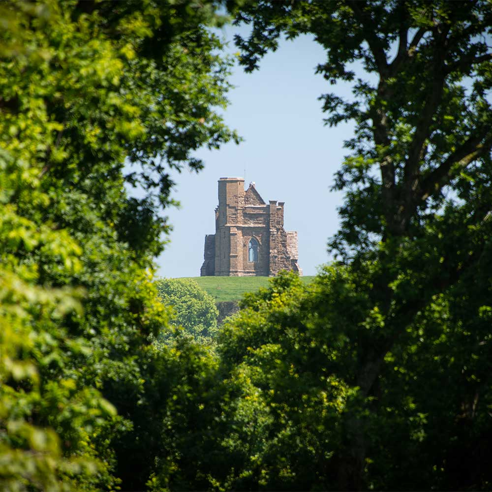 St Catherine's Chapel through the trees